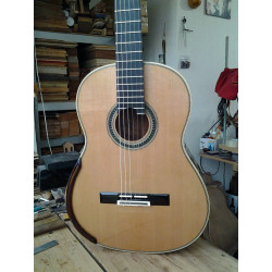 Guitarra doble tapa,...