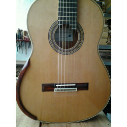 Guitarra tapa sólida,...