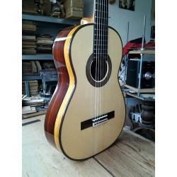 Guitarra Torres Cocobolo,...