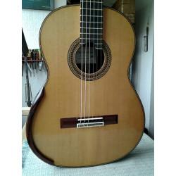 Cedar Top Guitar